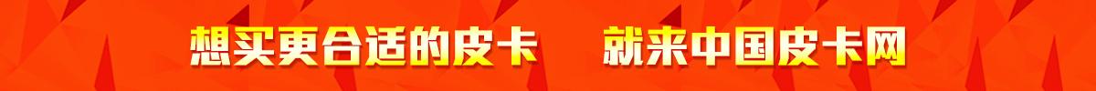 买皮卡到中国皮卡网