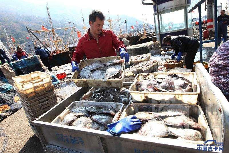 海鲜运输专家来了!   深度解析拓陆者原厂定制海鲜版皮卡