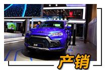 产销快报:江铃皮卡首月产升销降 共售2909辆